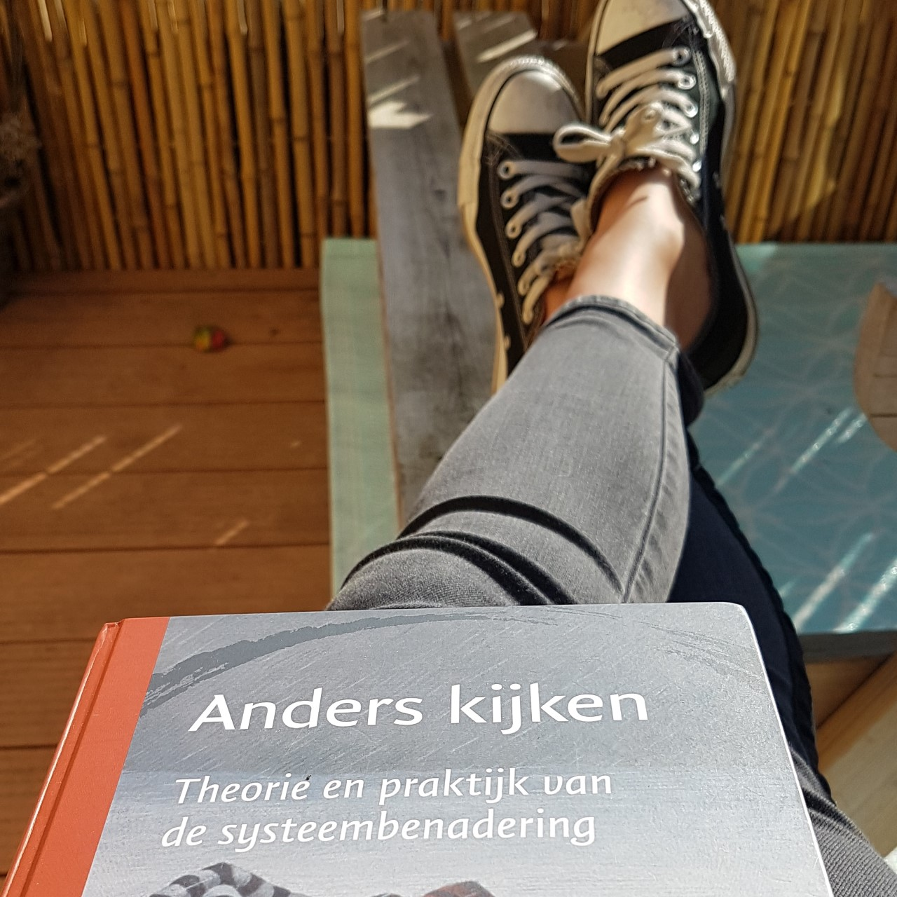 systeemtheorie-kindercoach-gouda-superkids-coaching